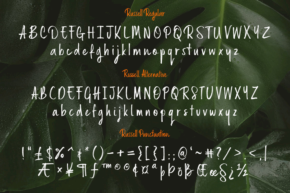 Russell Brush Script