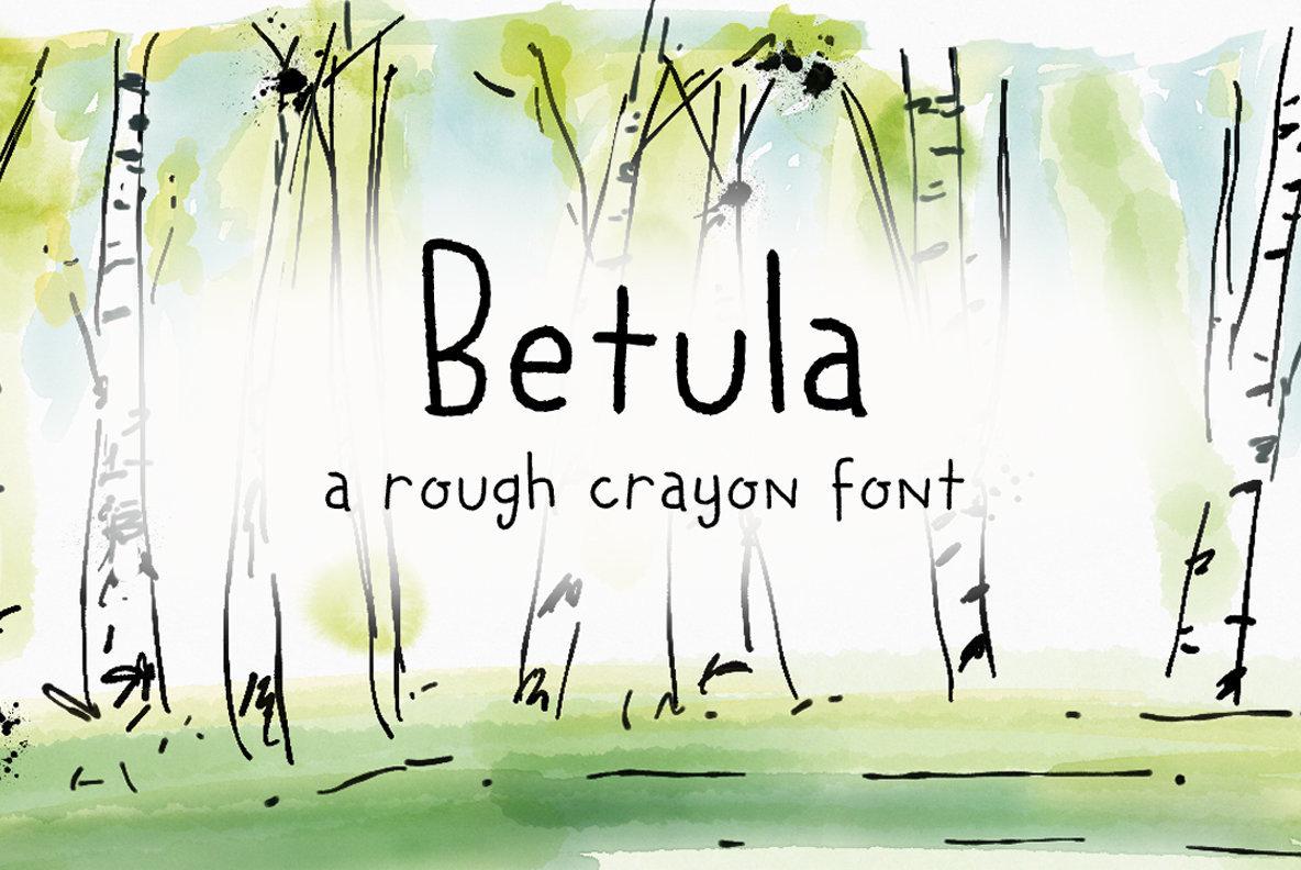 Betula