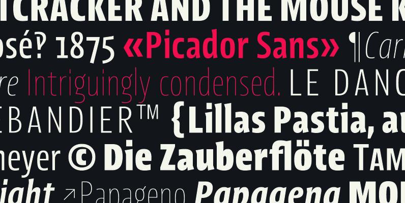Picador Sans