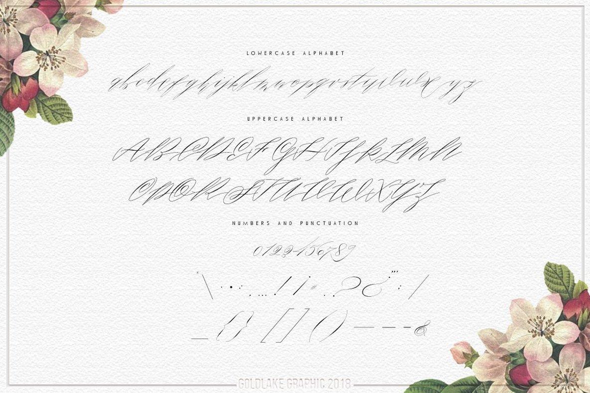 Roosy Script