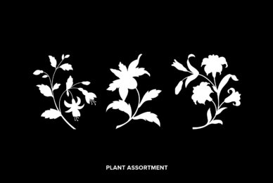 Plant Assortment