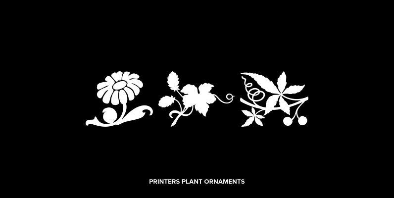 Printers Plant Ornaments
