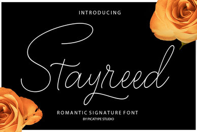 Stayreed