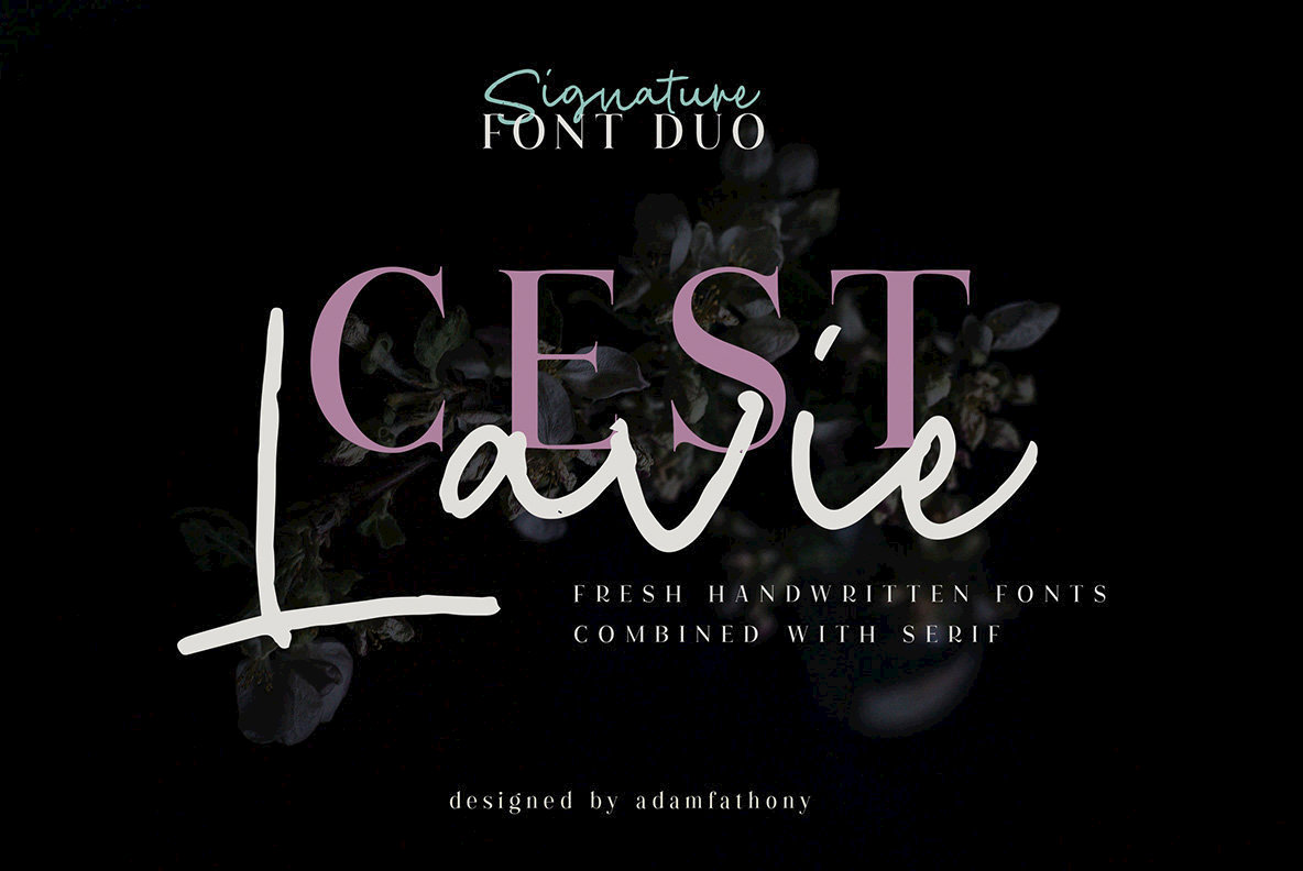 Cest Lavie Font Duo