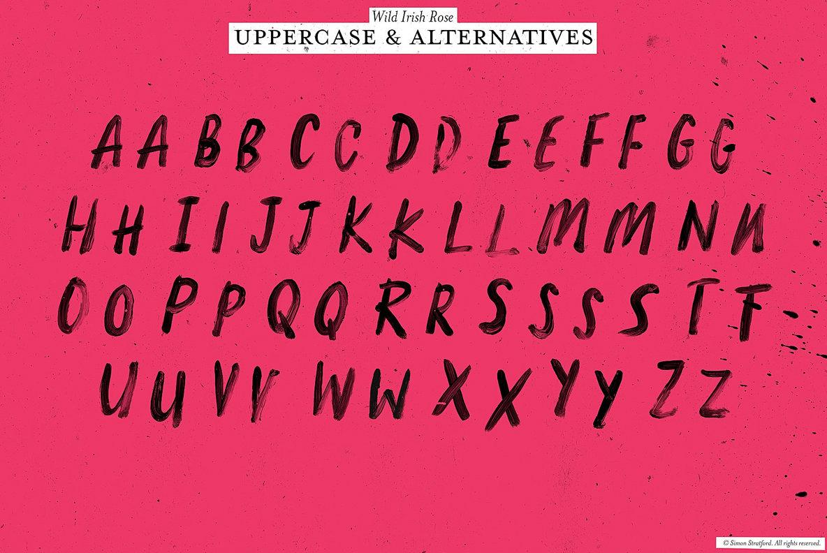 Wild Irish Rose Brush Script  SVG Font