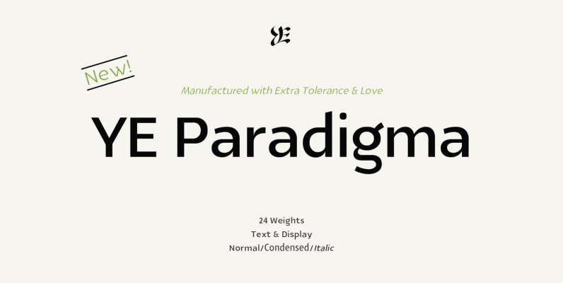 YE Paradigma