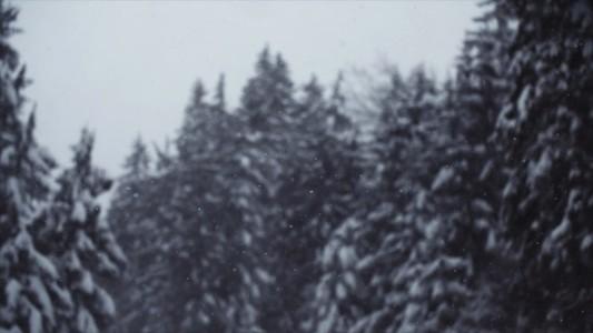 Snowfall 02