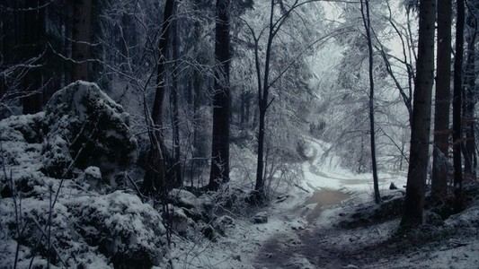 Snowfall 03