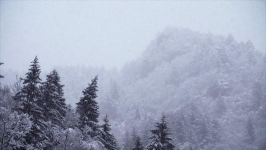 Snowfall 06