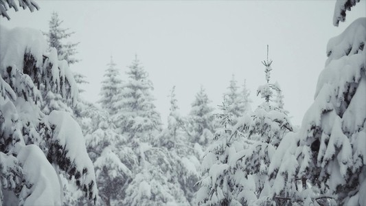 Snowfall 07