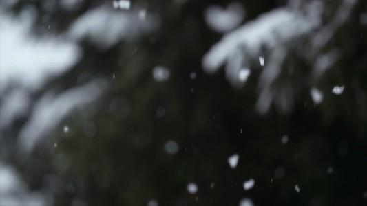 Snowfall 10