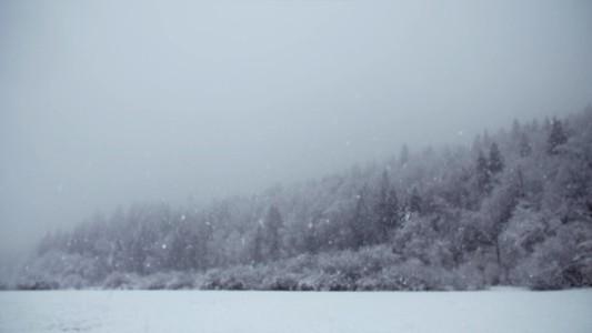 Snowfall 26