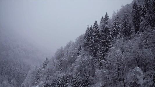 Snowfall 27