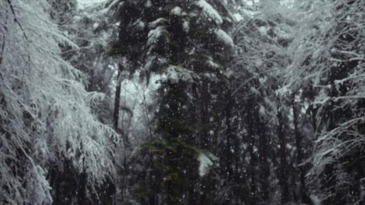 Snowfall 28