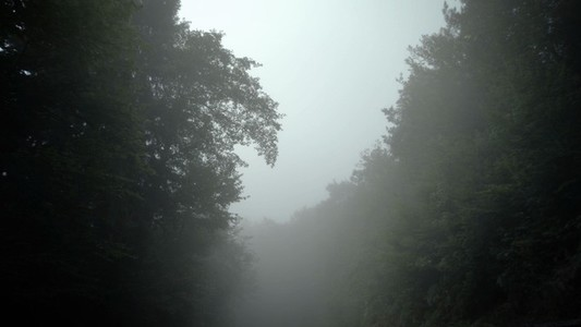 Nomad Misty Canopy