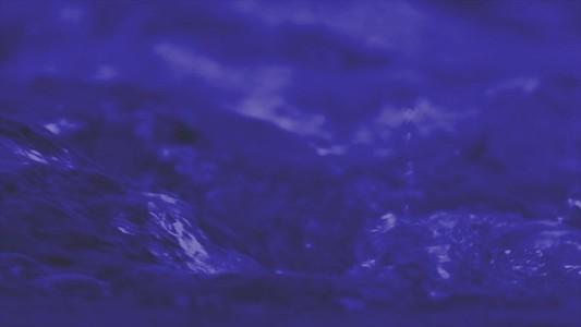 Torrent Purple