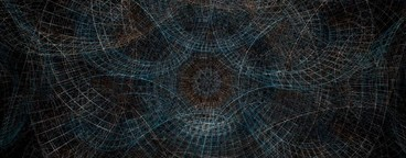 Abstract Organic Wireframe 12